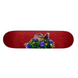 Chipmunk photo (4) type1 20 cm skateboard deck