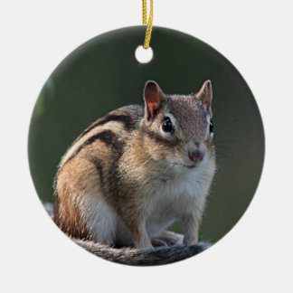 Chipmunk photo christmas ornament