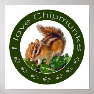 Chipmunk photo poster