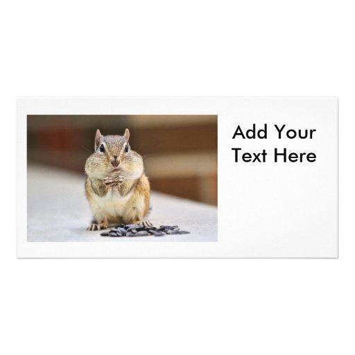 Chipmunk Picture Customized Photo Card