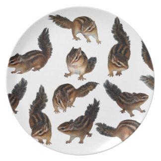 Chipmunk , Plate
