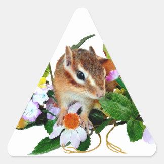 chipmunk , Squirrel ,  photo Triangle Sticker