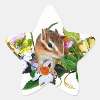 chipmunk , Squirrel ,  photo Star Sticker