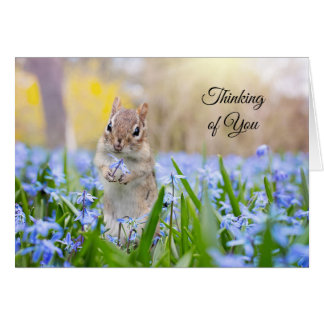 Chipmunk Thinking of You Card (blank inside)