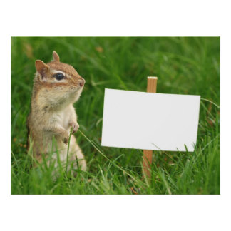 chipmunk with blank sign poster