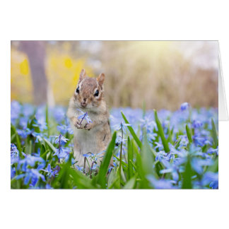 Chipmunk With Flower Card