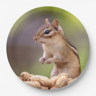 Chipmunk with peanuts 9 inch paper plate