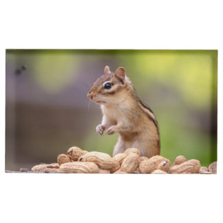 Chipmunk with peanuts table card holder