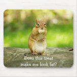 Chipmunk with treat mousepad