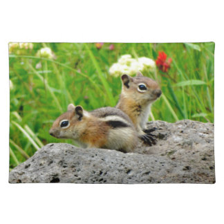 Chipmunks and wildflowers cloth placemat