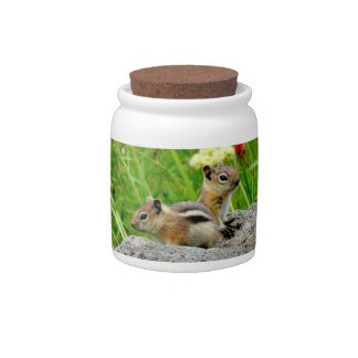 Chipmunks and wildflowers candy dish