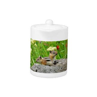 Chipmunks and wildflowers