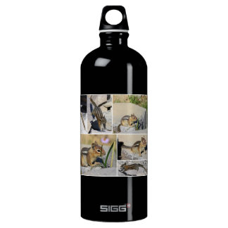 Chipmunks! SIGG Traveller 1.0L Water Bottle