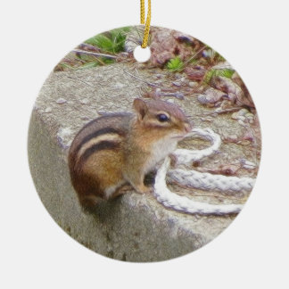 Chippie The Chipmunk Investigates A Rope Christmas Ornament