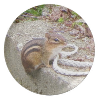 Chippie The Chipmunk Investigates A Rope Plate