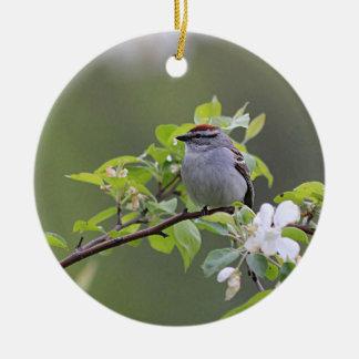 Chipping Sparrow Round Ceramic Decoration