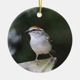 Chipping Sparrow Round Ceramic Decoration