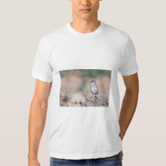 Chipping sparrow tshirt