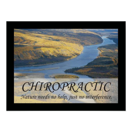 Chiropractic Quotes & Sayings Nature Poster