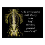 Chiropractic Quotes & Sayings Nervous System Poster