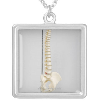 Chiropractic skeleton silver plated necklace