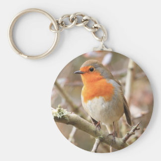 Chirpy Robin Key Ring
