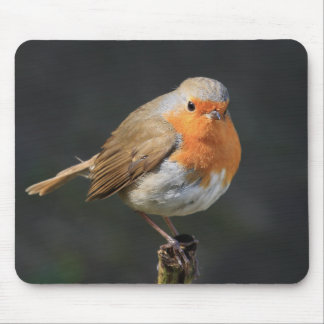Chirpy Robin Mouse Pad