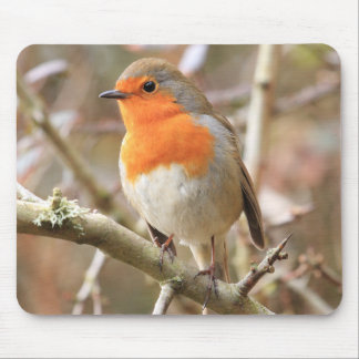 Chirpy Robin Mouse Pads