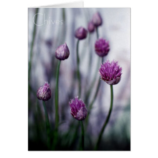 Chives Growing Wild Note Card