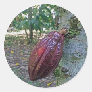 chocolade fruit round sticker