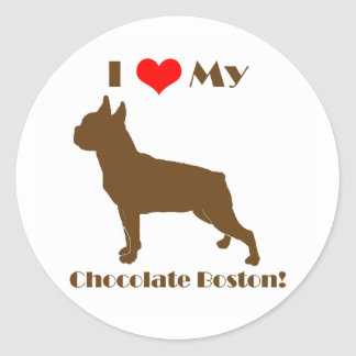 Chocolate Boston Terrier - Sticker