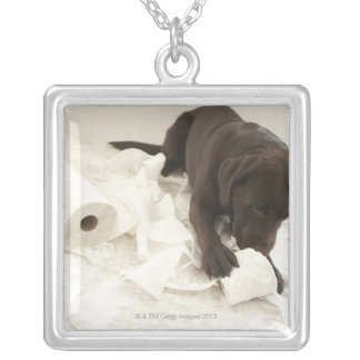 Chocolate brown labrador. silver plated necklace
