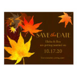 Chocolate Brown Maple Leaf Wedding Save the Date