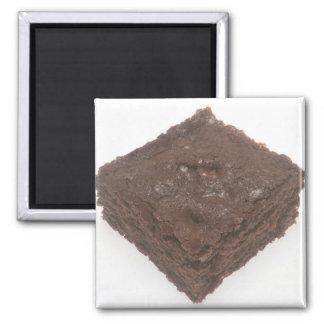 Chocolate Brownie Magnet