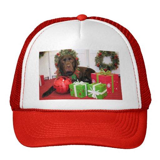 Chocolate Charlie - Chocolate Labrador - Wolfe Hat