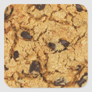 Chocolate Chip Cookie Square Stickers