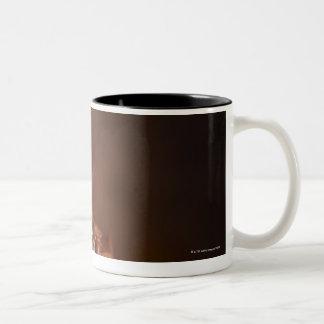 Chocolate Cupcake with a Raspberry topping Two-Tone Coffee Mug