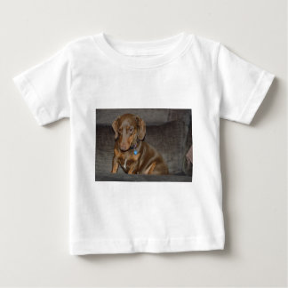 Chocolate Dachshund Baby T-Shirt
