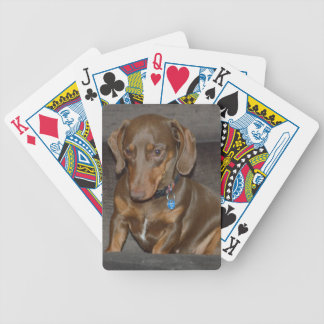 Chocolate Dachshund Bicycle Playing Cards
