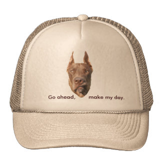 Chocolate Dane Cap