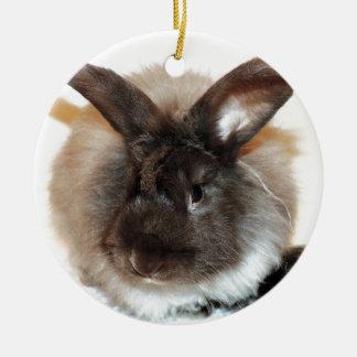 Chocolate French Angora Bunny Rabbit Photograph Christmas Ornament