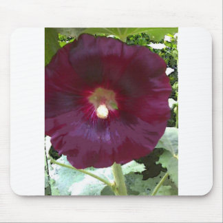 Chocolate Hollyhock Mouse Pad