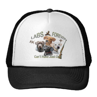 Chocolate Lab Apparel by PetVenturesUSA Mesh Hat