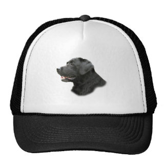 Chocolate Lab Apparel By PetVenturesUSA Hats