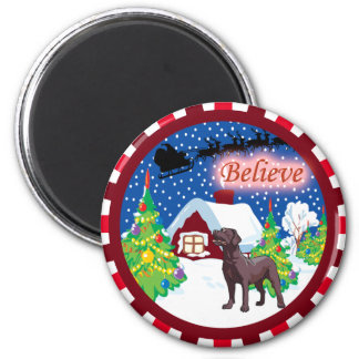 chocolate lab believe magnets