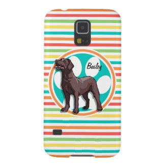 Chocolate Lab Bright Rainbow Stripes Case For Galaxy S5