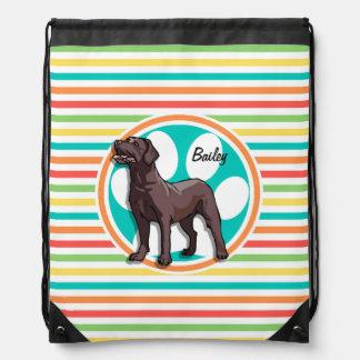 Chocolate Lab Bright Rainbow Stripes Cinch Bag