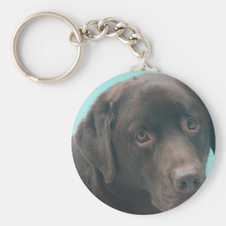 Chocolate Lab Dog Keychain