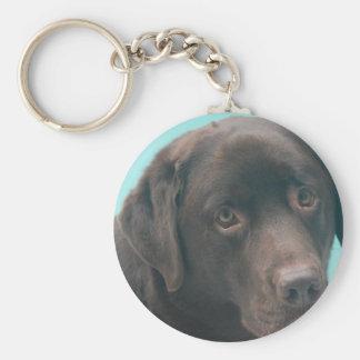 Chocolate Lab Dog Keychain