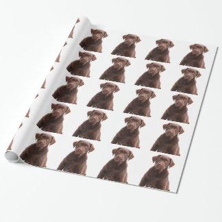 Chocolate Lab Dog Puppy Photo Pet Labrador Retriev Wrapping Paper